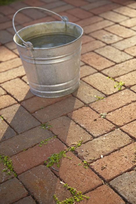 If your patio is in a damp or shaded area in your yard, you may notice some  mold or mildew growing on the bricks. While this will not damage the  integrity ... - Proper Technique For Cleaning Your Brick Patio - Pine Hall Brick, Inc.